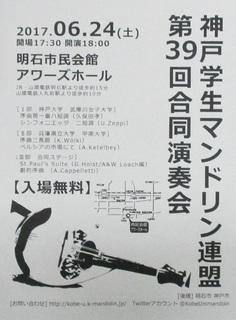 H29-6-24-マンドリン.jpg